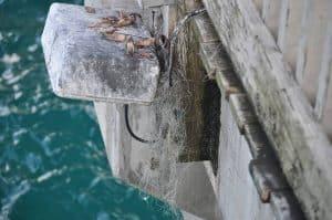 Fishing line on dock