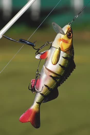 Simple Tips For Choosing The Right Bass Lures