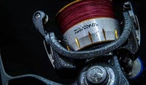 Spinning reel with red line
