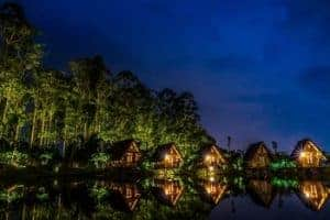 Night time cabins