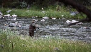 Person fly fishing in river