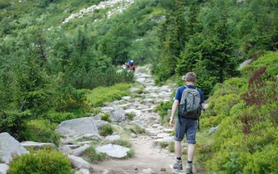 How Far Can A Beginner Hike in a Day?