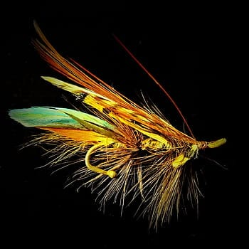 How Much Do Fishing Flies Really Cost?